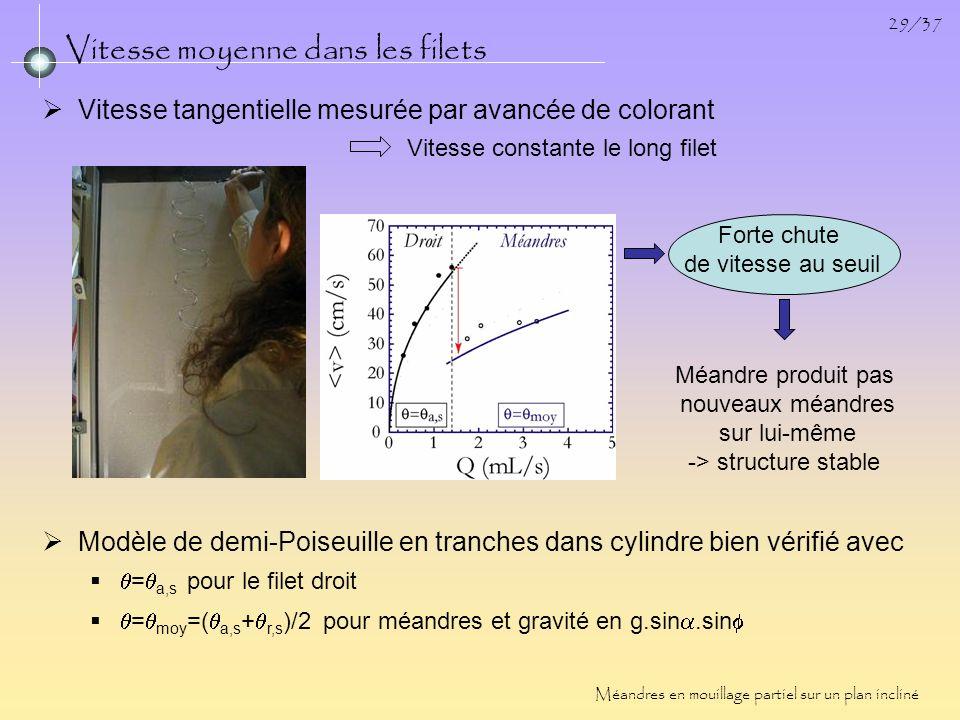 29/37 Vitesse moyenne dans les filets Méandres en mouillage partiel sur un plan incliné Vitesse constante le long filet Vitesse tangentielle mesurée p