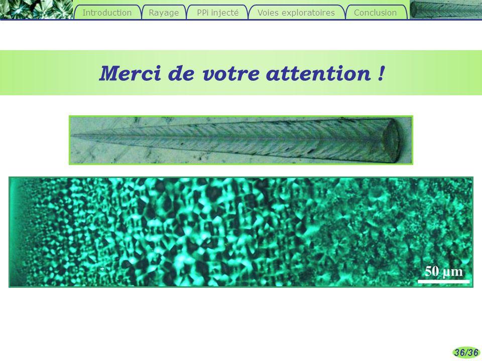 36/36 Merci de votre attention ! ConclusionIntroductionPPi injecté Voies exploratoires Rayage
