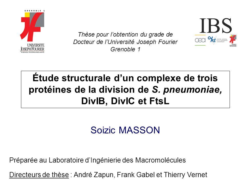 Étude structurale dun complexe de trois protéines de la division de S. pneumoniae, DivIB, DivIC et FtsL Soizic MASSON Directeurs de thèse : André Zapu
