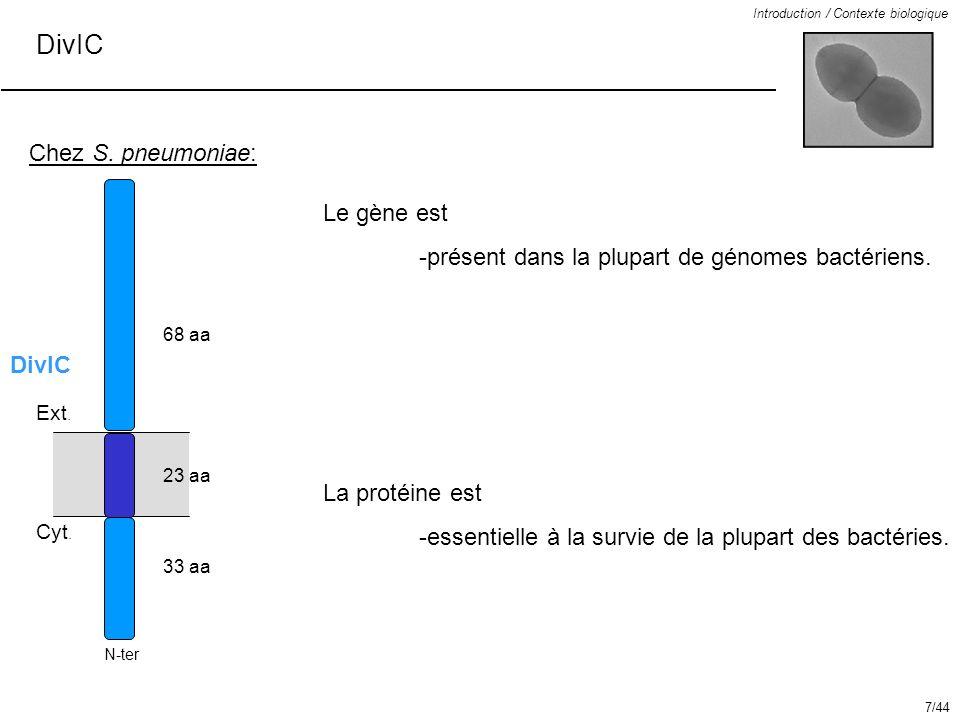Introduction / Contexte biologique DivIC Chez S. pneumoniae: 68 aa 23 aa 33 aa Le gène est -présent dans la plupart de génomes bactériens. La protéine
