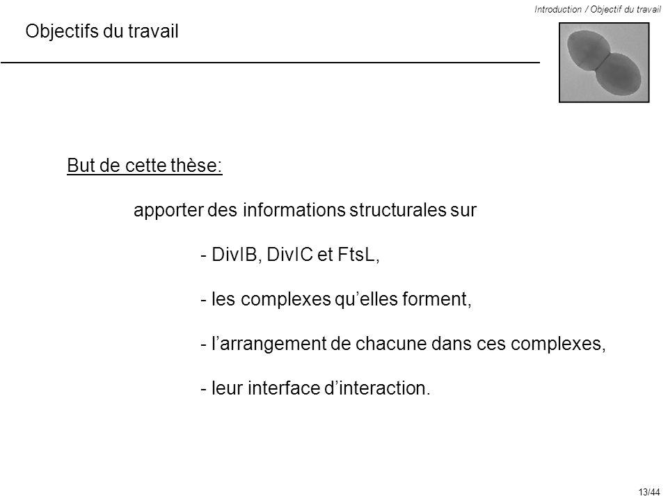 Objectifs du travail Introduction / Objectif du travail But de cette thèse: apporter des informations structurales sur - DivIB, DivIC et FtsL, - les c