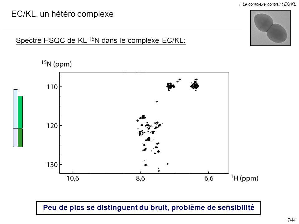 EC/KL, un hétéro complexe I. Le complexe contraint EC/KL Spectre HSQC de KL 15 N dans le complexe EC/KL: Peu de pics se distinguent du bruit, problème