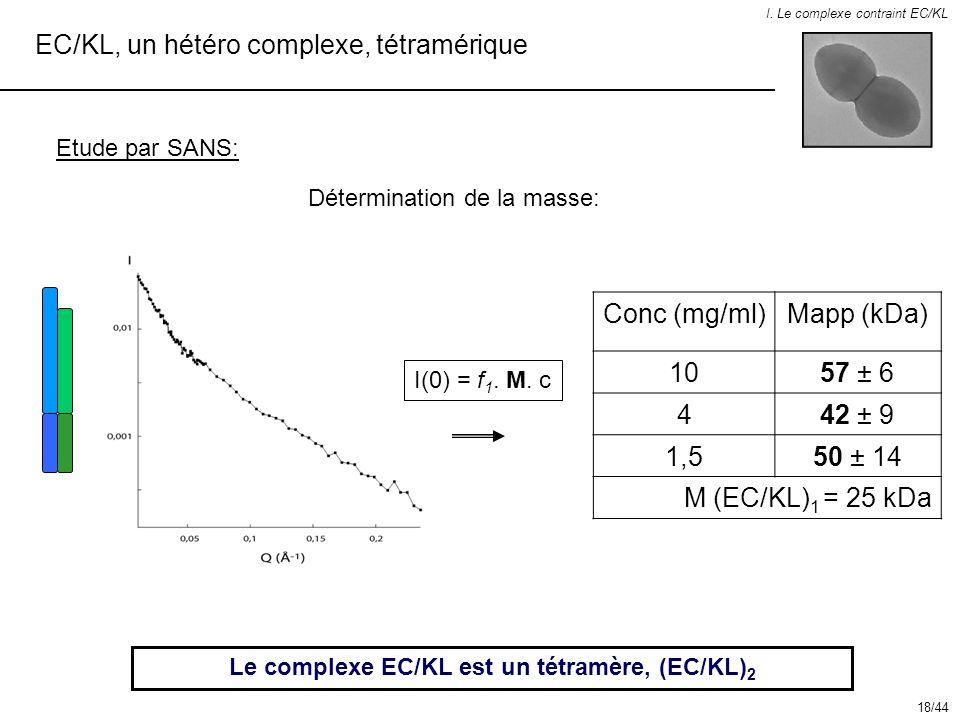 EC/KL, un hétéro complexe, tétramérique I. Le complexe contraint EC/KL Etude par SANS: Le complexe EC/KL est un tétramère, (EC/KL) 2 Conc (mg/ml)Mapp