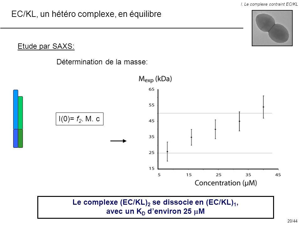 EC/KL, un hétéro complexe, en équilibre I. Le complexe contraint EC/KL Etude par SAXS: Le complexe (EC/KL) 2 se dissocie en (EC/KL) 1, avec un K D den
