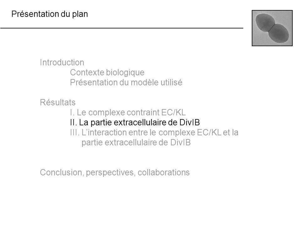 Présentation du plan Introduction Contexte biologique Présentation du modèle utilisé Résultats I. Le complexe contraint EC/KL II. La partie extracellu