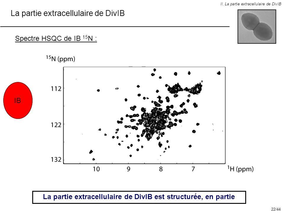 II. La partie extracellulaire de DivIB La partie extracellulaire de DivIB Spectre HSQC de IB 15 N : La partie extracellulaire de DivIB est structurée,