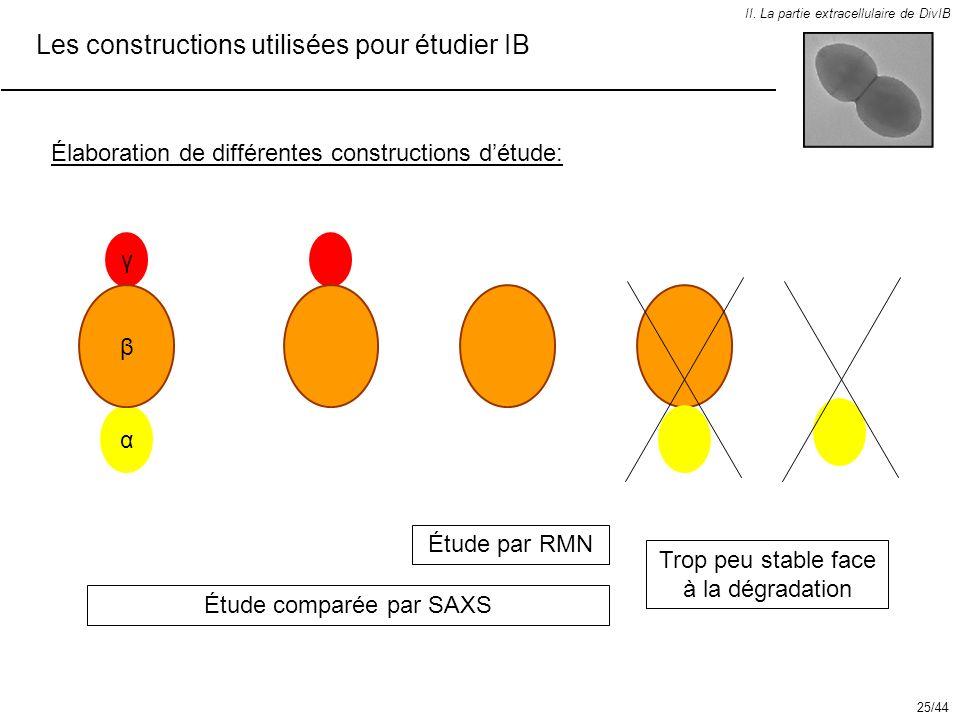 Les constructions utilisées pour étudier IB II. La partie extracellulaire de DivIB Élaboration de différentes constructions détude: Étude comparée par