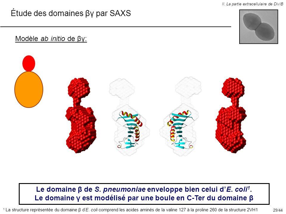 II. La partie extracellulaire de DivIB Étude des domaines βγ par SAXS Modèle ab initio de βγ: Le domaine β de S. pneumoniae enveloppe bien celui dE. c