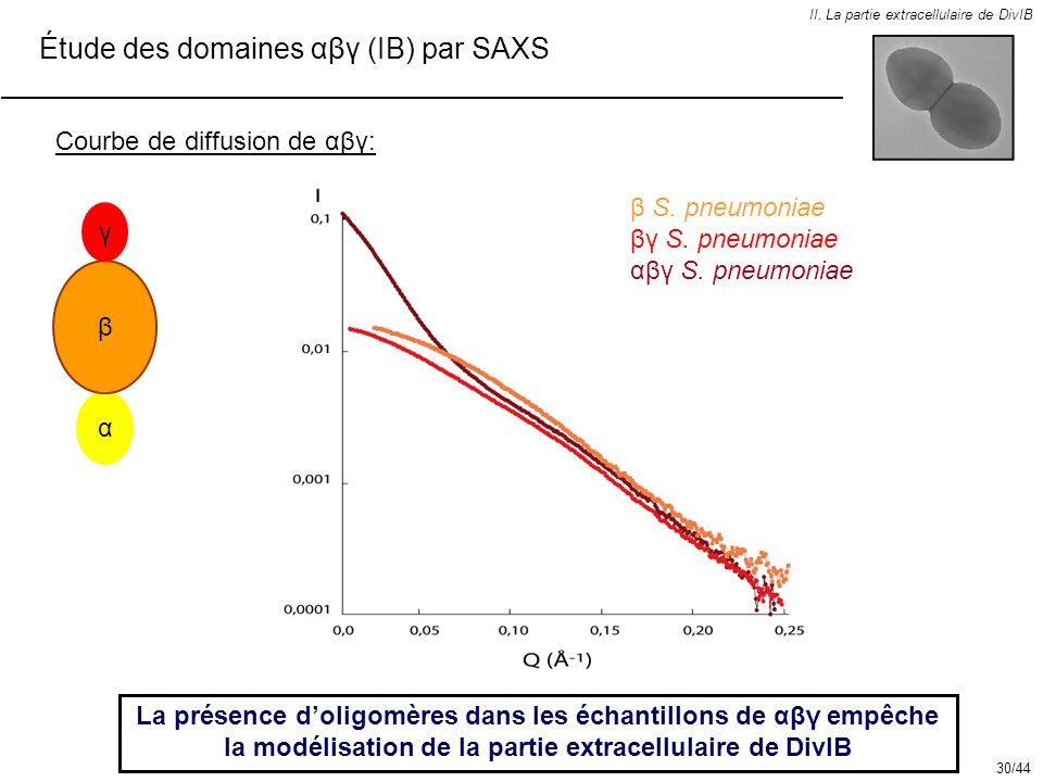II. La partie extracellulaire de DivIB Étude des domaines αβγ (IB) par SAXS Courbe de diffusion de αβγ: La présence doligomères dans les échantillons