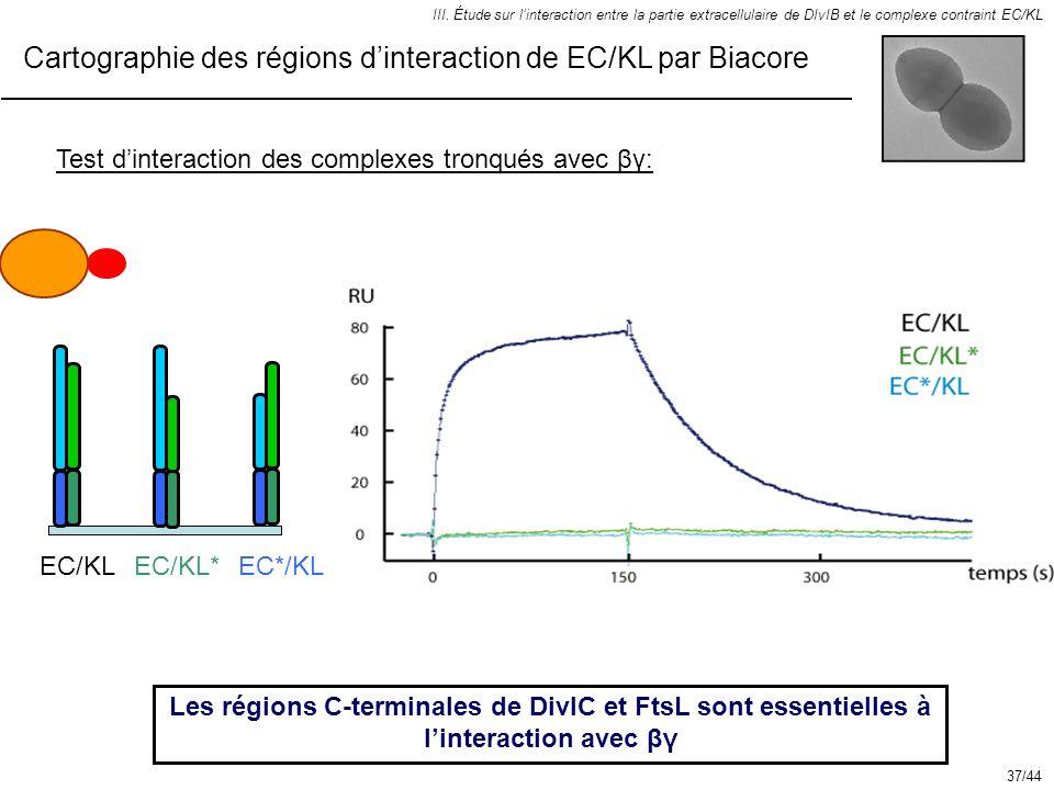 III. Étude sur linteraction entre la partie extracellulaire de DIvIB et le complexe contraint EC/KL Test dinteraction des complexes tronqués avec βγ: