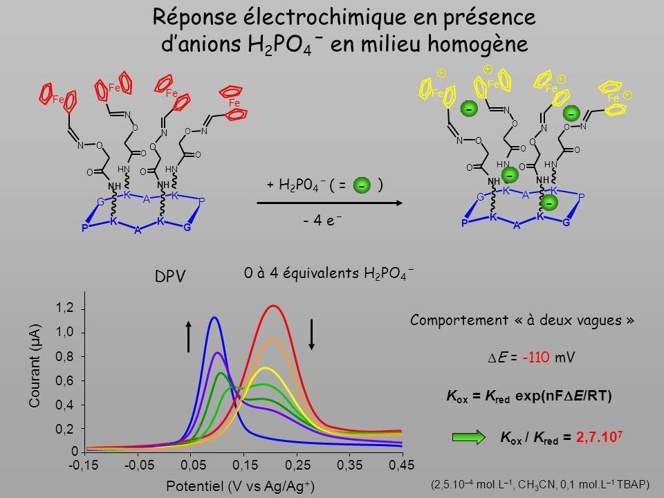 Réponse électrochimique en présence danions H 2 PO 4 ˉ en milieu homogène (2,5.10 –4 mol.L –1, CH 3 CN, 0,1 mol.L –1 TBAP) + H 2 P0 4 ˉ - 4 eˉ - ( = )