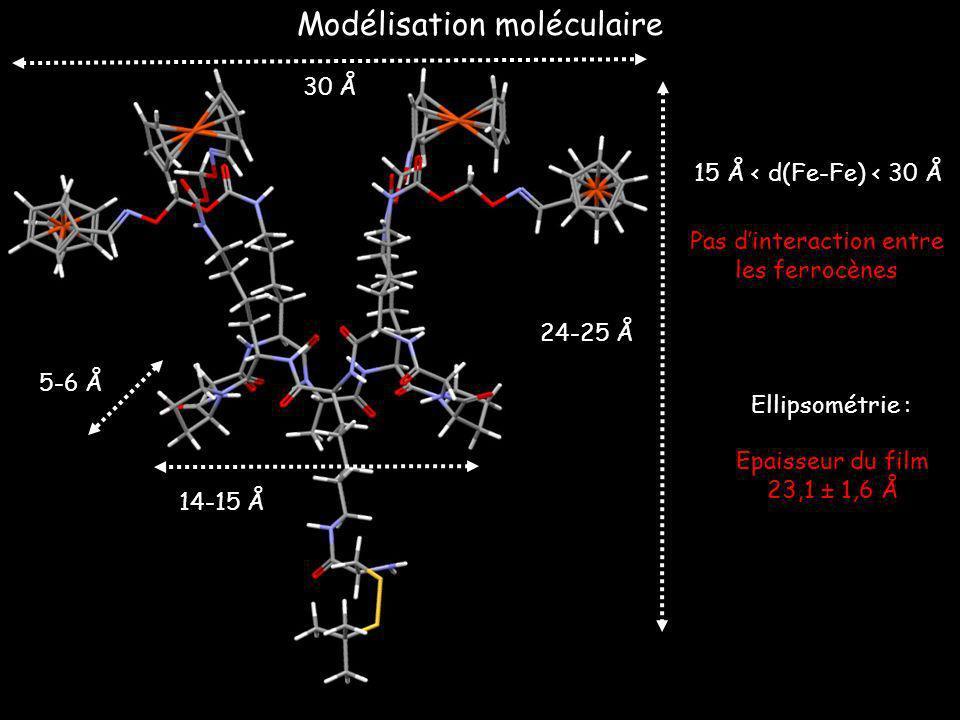 5-6 Å 14-15 Å 24-25 Å Ellipsométrie : Epaisseur du film 23,1 ± 1,6 Å Modélisation moléculaire 30 30 Å 15 Å < d(Fe-Fe) < 30 Å Pas dinteraction entre le