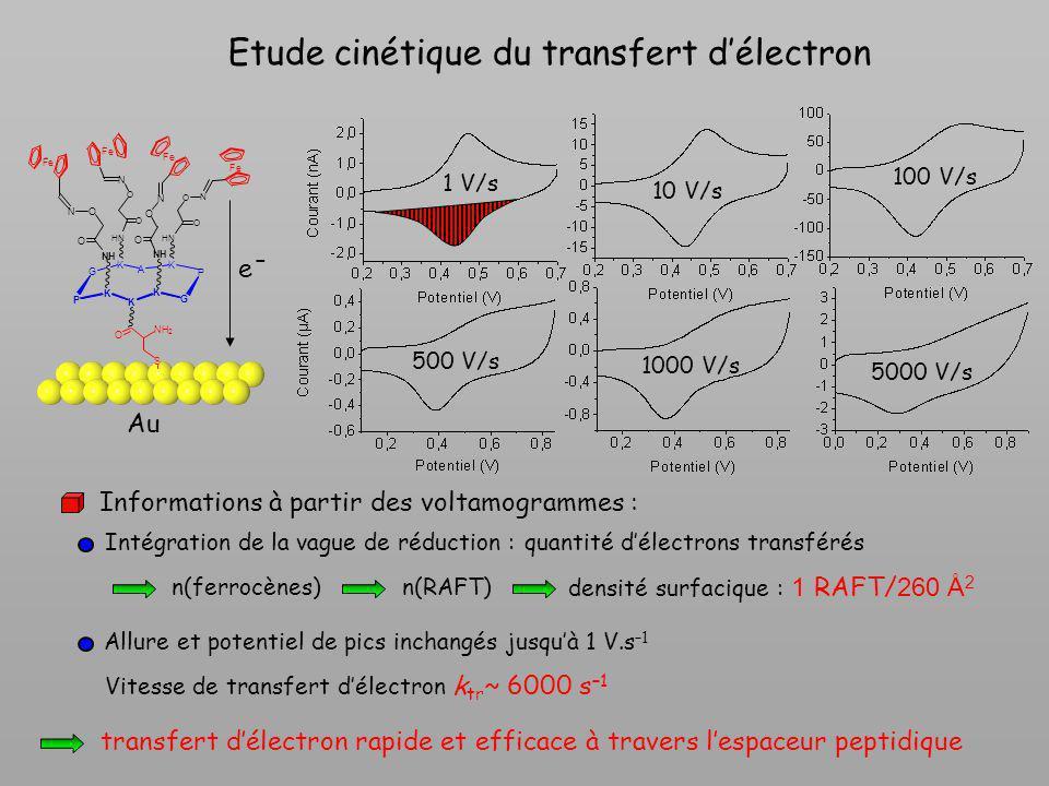 Etude cinétique du transfert délectron 500 V/s 1 V/s 10 V/s 100 V/s 1000 V/s 5000 V/s O NH 2 S K G P K A K K K G HN NH NH HN P O O O O O O O O N N N N