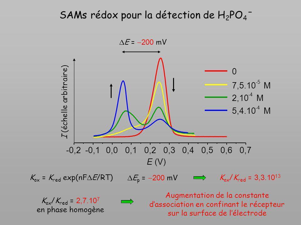 SAMs rédox pour la détection de H 2 PO 4 ˉ E = 200 mV I (échelle arbitraire) -0,2-0,10,00,10,20,30,40,50,60,7 0 7,5.10 -5 M 2,10 -4 M 5,4.10 -4 M E (V