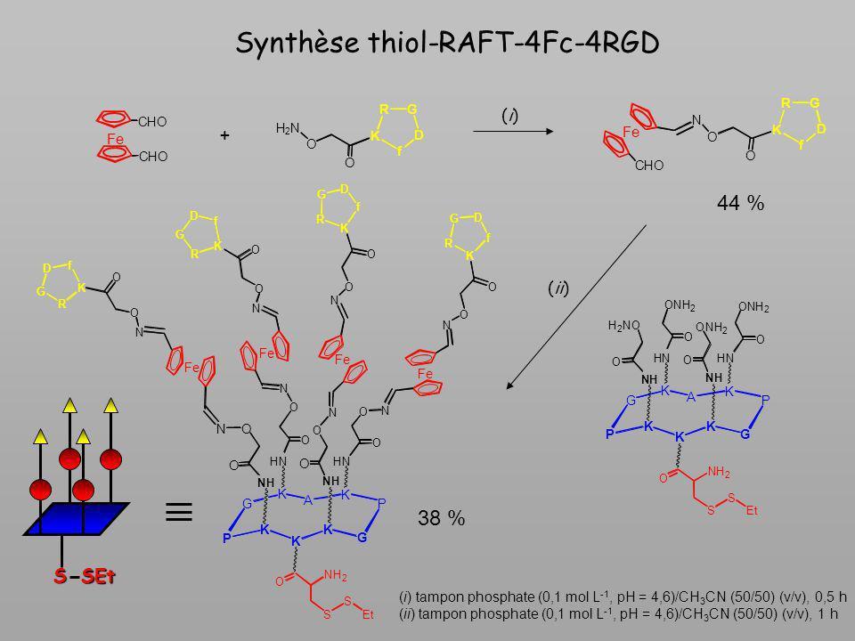 Synthèse thiol-RAFT-4Fc-4RGD + (i)(i) (ii) (i) tampon phosphate (0,1 mol L -1, pH = 4,6)/CH 3 CN (50/50) (v/v), 0,5 h (ii) tampon phosphate (0,1 mol L