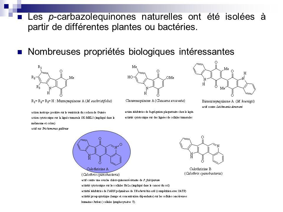 Travaux personnels Synthèse de la 3-bromocarbazolequinone Bromation à laide du N-bromosuccinimide Obtention de deux hydroxycarbazoles monobromé et dibromé (proportion 9:1) Oxydation par le sel de Frémy conduit à une seule bromocarbazolequinone