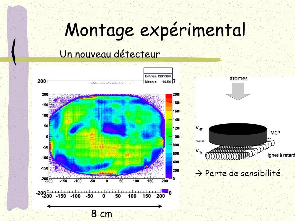 8 cm Montage expérimental Un nouveau détecteur Perte de sensibilité