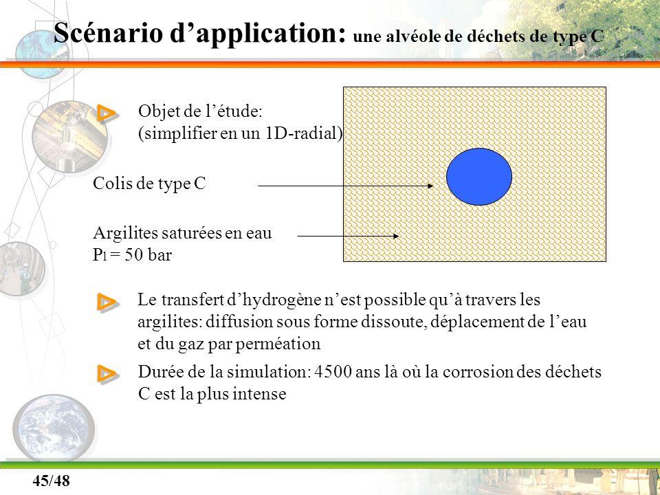 45/48 Scénario dapplication: une alvéole de déchets de type C ΔΔ Objet de létude: (simplifier en un 1D-radial) Colis de type C Argilites saturées en e