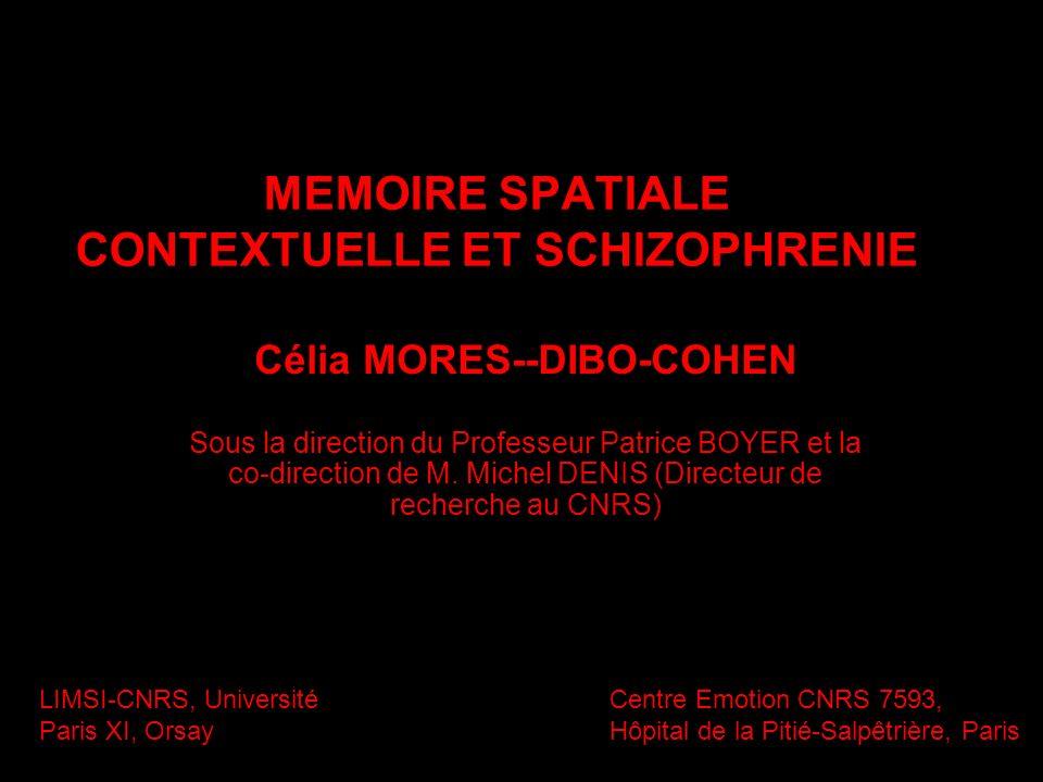 MEMOIRE SPATIALE CONTEXTUELLE ET SCHIZOPHRENIE Célia MORES--DIBO-COHEN Sous la direction du Professeur Patrice BOYER et la co-direction de M. Michel D
