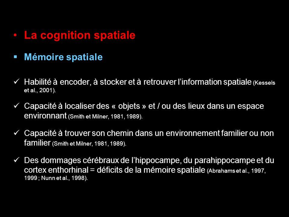 La cognition spatiale Mémoire spatiale Habilité à encoder, à stocker et à retrouver linformation spatiale (Kessels et al., 2001). Capacité à localiser