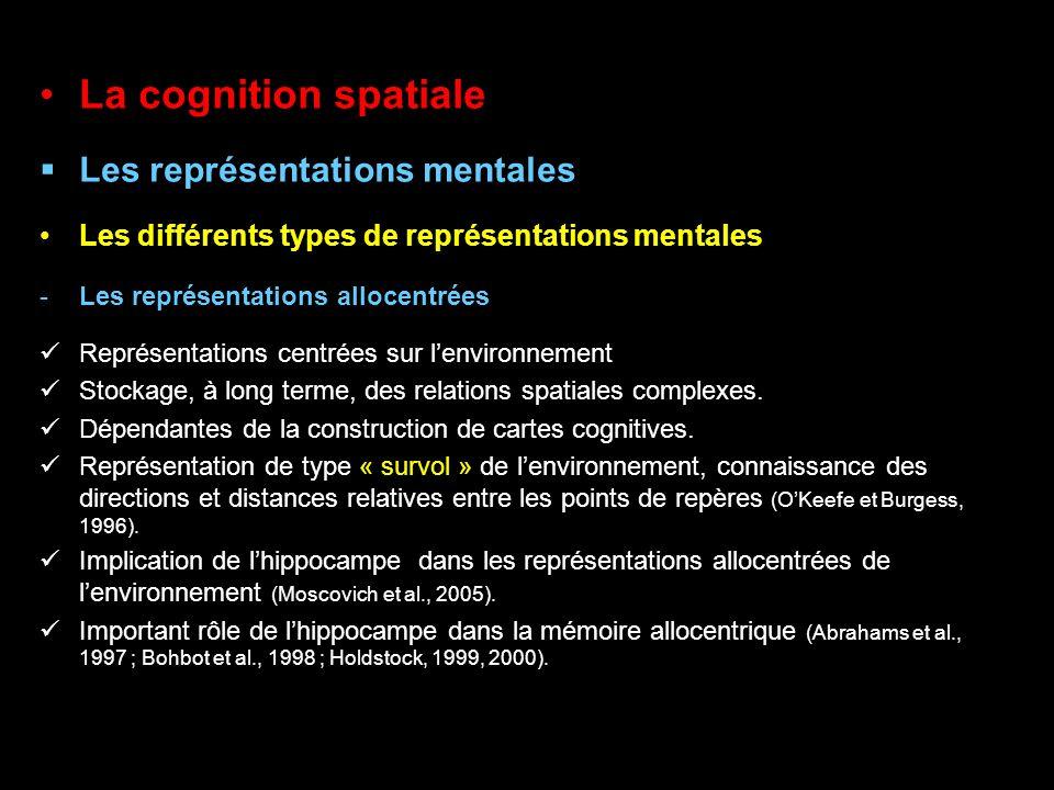 La cognition spatiale Les représentations mentales Les différents types de représentations mentales -Les représentations allocentrées Représentations