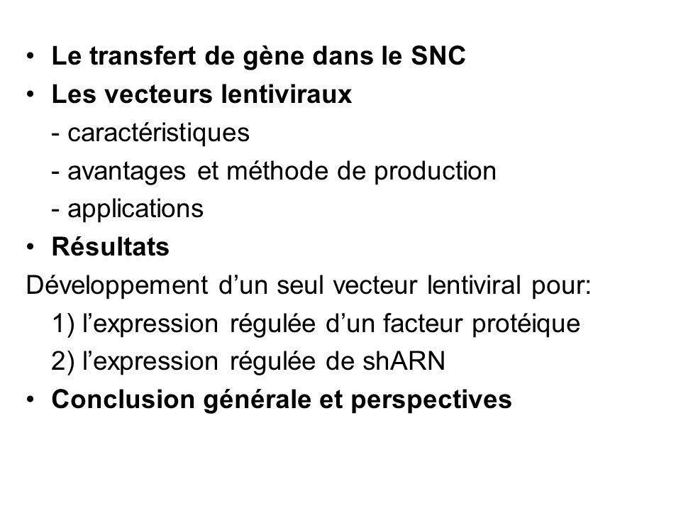Le transfert de gène dans le SNC Les vecteurs lentiviraux - caractéristiques - avantages et méthode de production - applications Résultats Développeme
