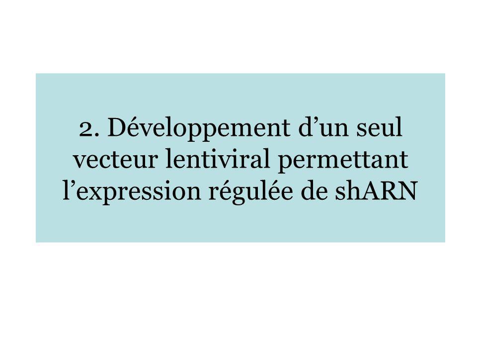 2. Développement dun seul vecteur lentiviral permettant lexpression régulée de shARN