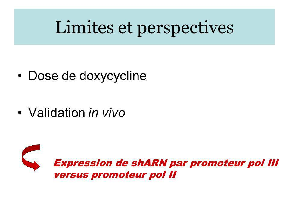 Limites et perspectives Dose de doxycycline Validation in vivo Expression de shARN par promoteur pol III versus promoteur pol II