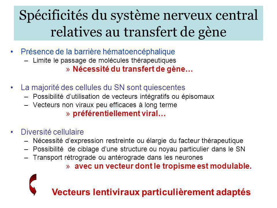 Avantages des vecteurs lentiviraux Transduction des cellules quiescentes et en division Expression stable et à long terme du transgène dans le SNC Faible toxicité Facilité de production à haut titre dénuée de RCR Pseudotypage aisé