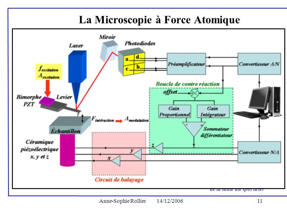 Anne-Sophie Rollier14/12/200611 La Microscopie à Force Atomique 1988 : Premiers articles théoriques 1993 : Hansma développe le mode Tapping TM 1994 :