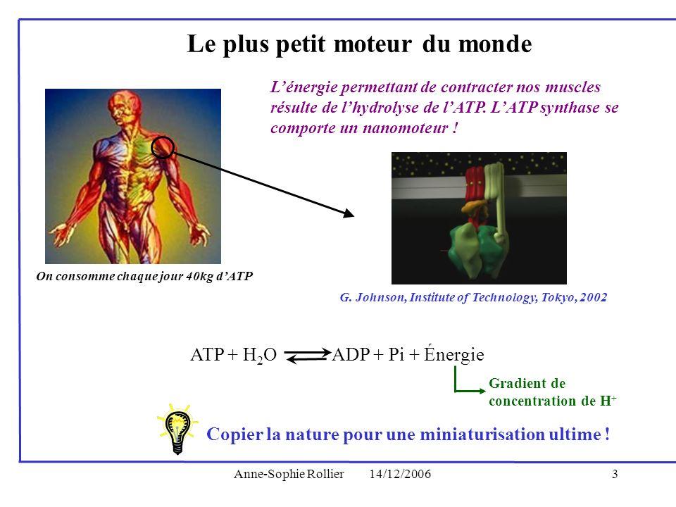 Anne-Sophie Rollier14/12/20063 Lénergie permettant de contracter nos muscles résulte de lhydrolyse de lATP. LATP synthase se comporte un nanomoteur !