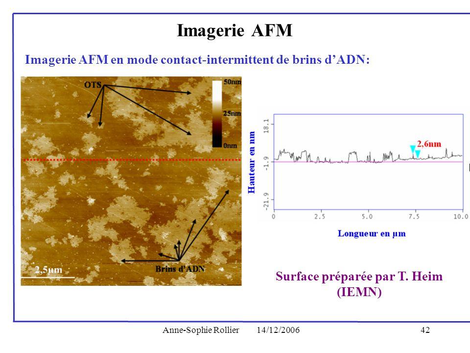 Anne-Sophie Rollier14/12/200642 Imagerie AFM en mode contact-intermittent de brins dADN: Surface préparée par T. Heim (IEMN) Imagerie AFM