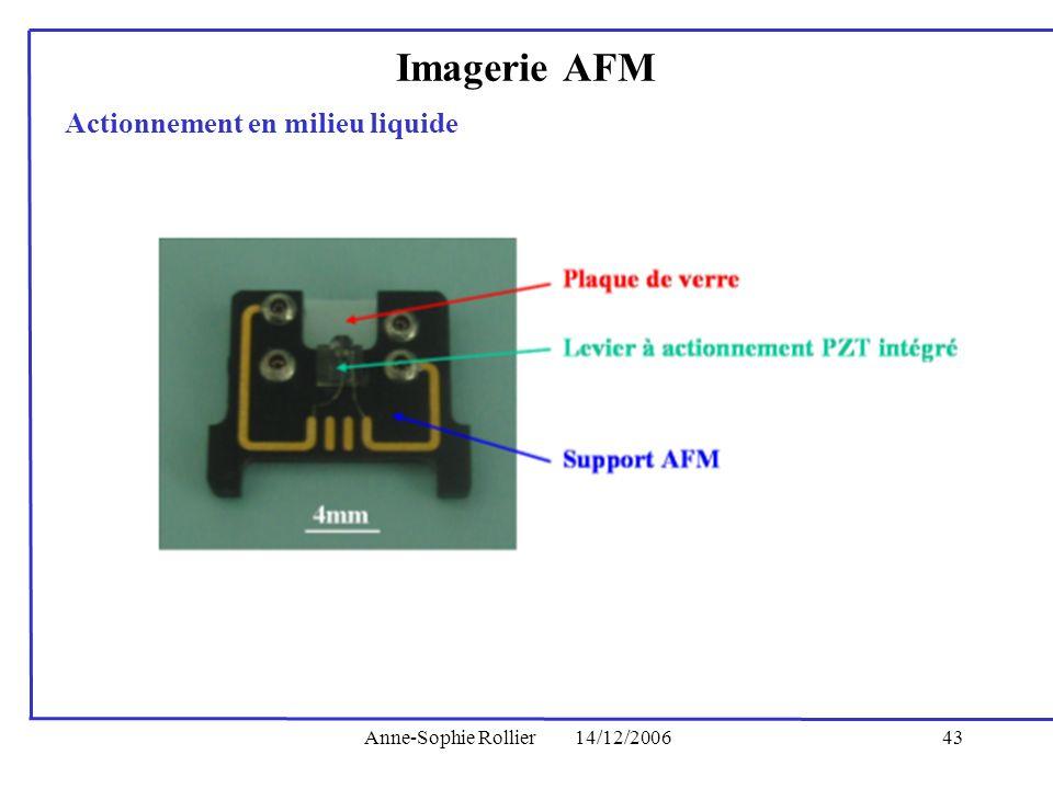 Anne-Sophie Rollier14/12/200643 Actionnement en milieu liquide Imagerie AFM