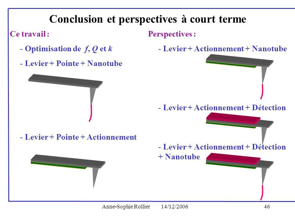 Anne-Sophie Rollier14/12/200646 Perspectives : - Levier + Actionnement + Nanotube - Levier + Actionnement + Détection + Nanotube Conclusion et perspec