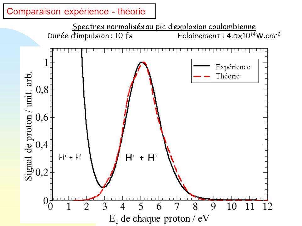 Comparaison expérience - théorie Spectres normalisés au pic dexplosion coulombienne Durée dimpulsion : 10 fs Eclairement : 4.5x10 14 W.cm -2 H + + H +