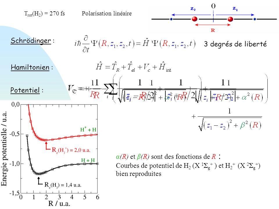 Hamiltonien : Potentiel : α(R) et β(R) sont des fonctions de R : Courbes de potentiel de H 2 (X 1 g + ) et H 2 + (X 2 g + ) bien reproduites Schröding