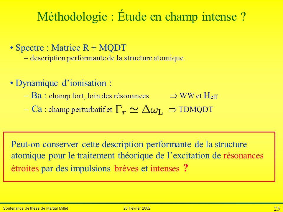 Soutenance de thèse de Martial Millet 26 Février 2002 25 Spectre : Matrice R + MQDT – description performante de la structure atomique. Dynamique dion