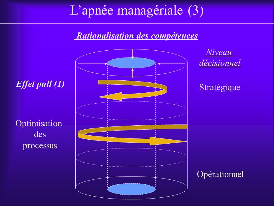 Stratégique Rationalisation des compétences Lapnée managériale (3) Niveau décisionnel Opérationnel Optimisation des processus Effet pull (1)