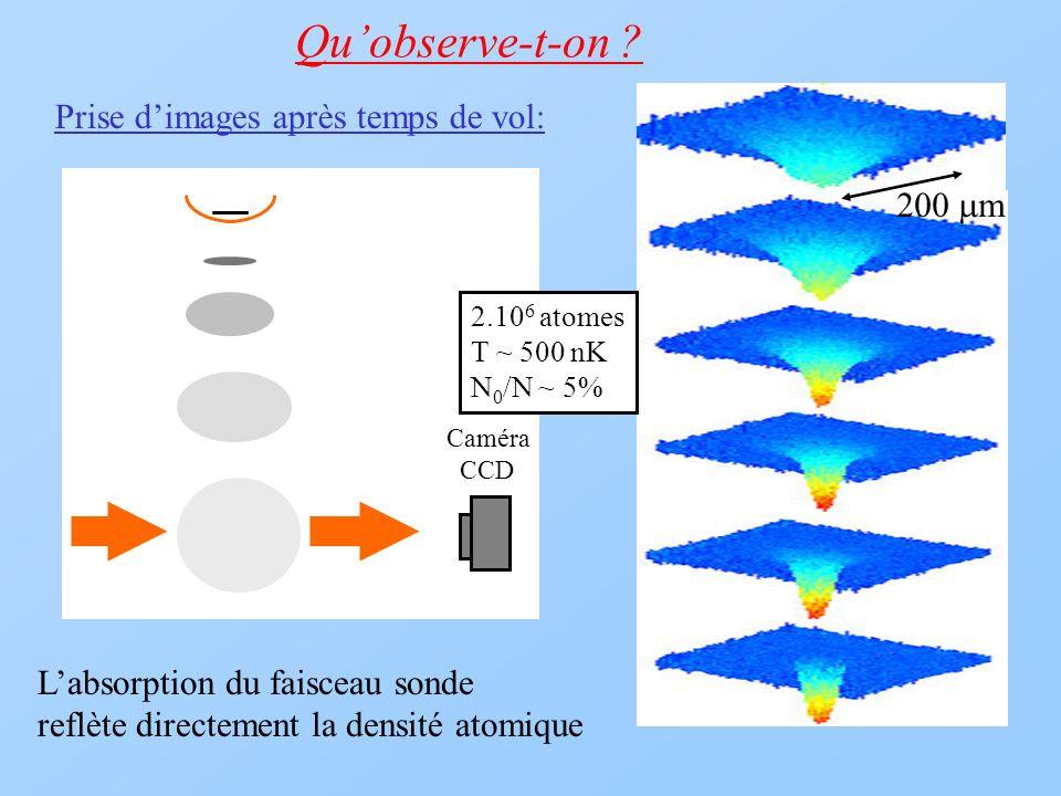 Prise dimages après temps de vol: Caméra CCD Quobserve-t-on ? 2.10 6 atomes T ~ 500 nK N 0 /N ~ 5% 200 m Labsorption du faisceau sonde reflète directe