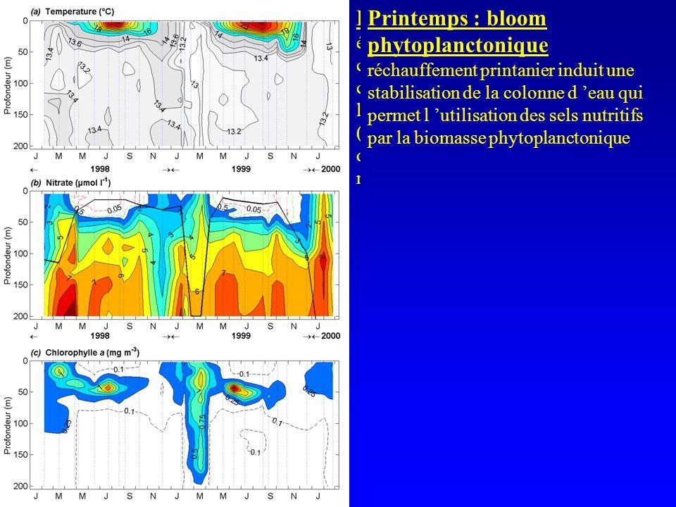 Hiver : mélange vertical refroidissement hivernal de l eau superficielle (T° voisine de 13°C) engendre un mélange vertical avec les eaux sous-jacentes
