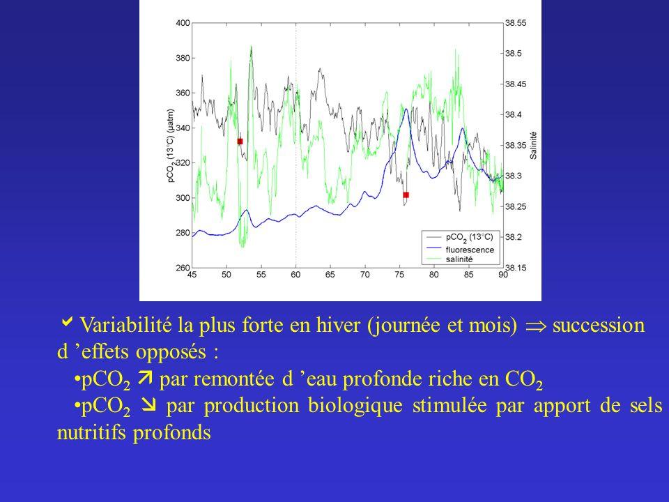 Variabilité la plus forte en hiver (journée et mois) succession d effets opposés : pCO 2 par remontée d eau profonde riche en CO 2 pCO 2 par productio