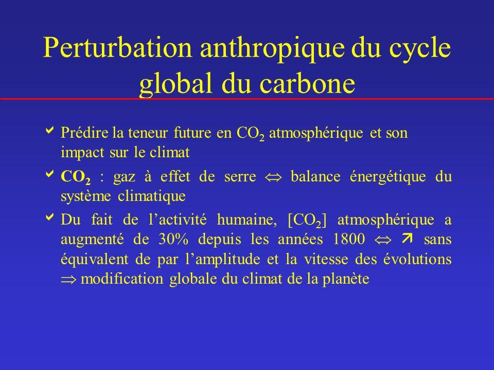 Perturbation anthropique du cycle global du carbone Prédire la teneur future en CO 2 atmosphérique et son impact sur le climat CO 2 : gaz à effet de s