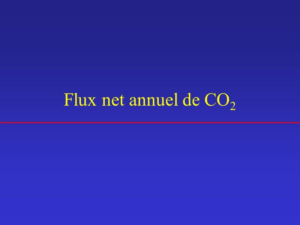 Flux net annuel de CO 2