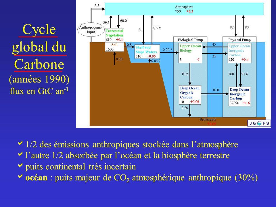 Cycle global du Carbone (années 1990) flux en GtC an -1 1/2 des émissions anthropiques stockée dans latmosphère lautre 1/2 absorbée par locéan et la b