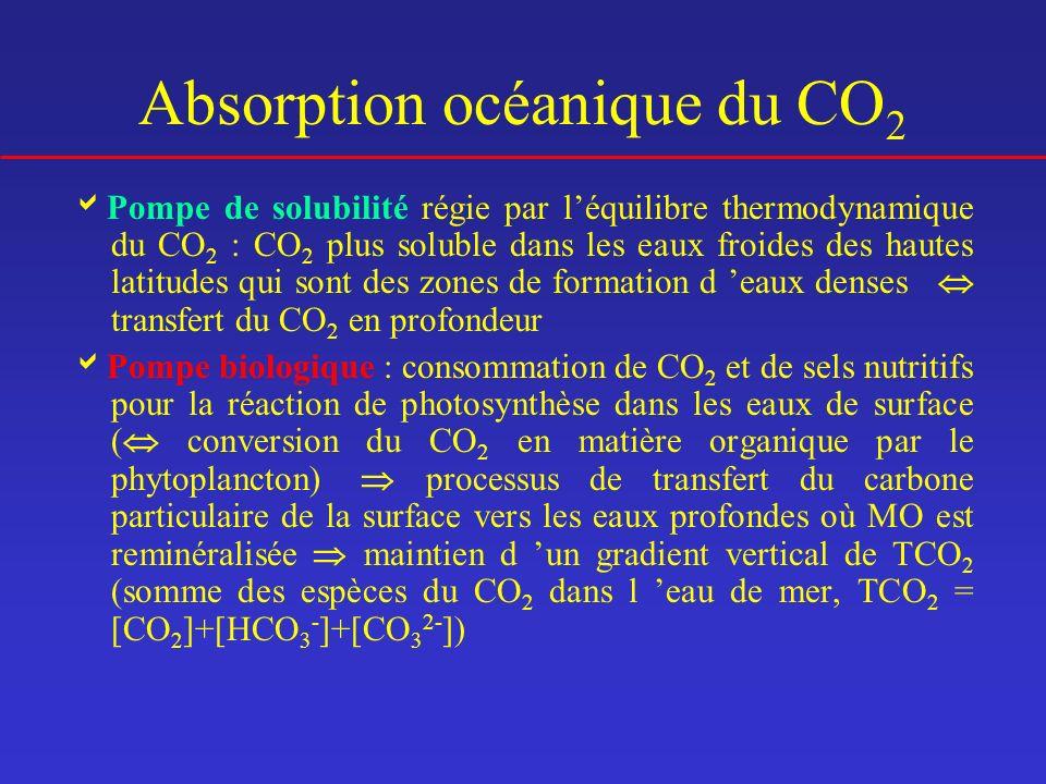 Absorption océanique du CO 2 Pompe de solubilité régie par léquilibre thermodynamique du CO 2 : CO 2 plus soluble dans les eaux froides des hautes lat