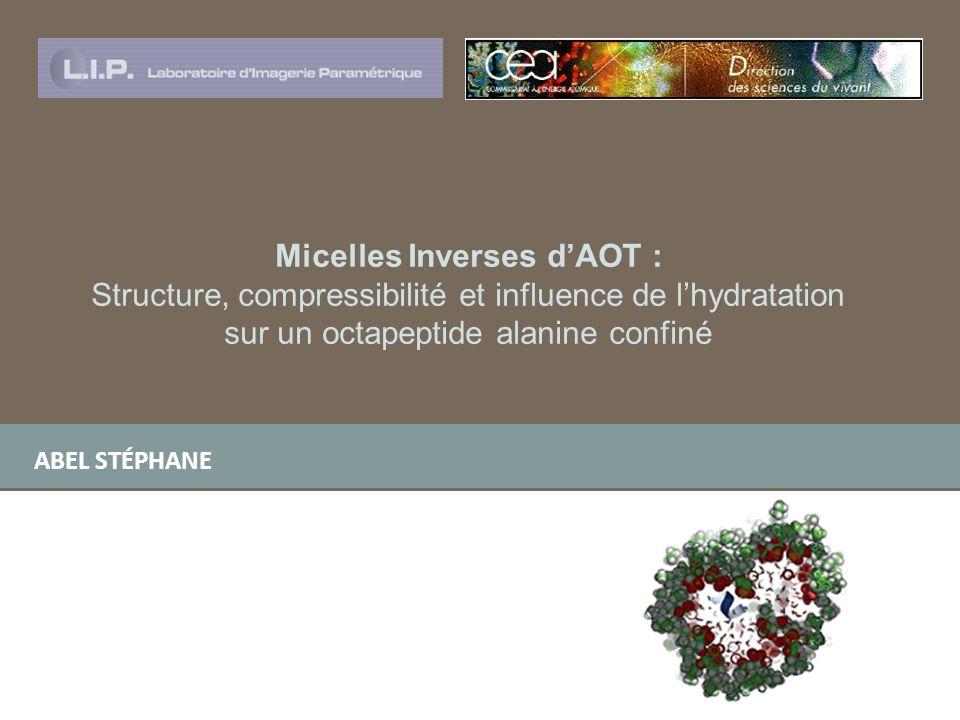 ABEL STÉPHANE Micelles Inverses dAOT : Structure, compressibilité et influence de lhydratation sur un octapeptide alanine confiné