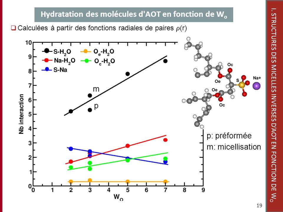 Hydratation des molécules d'AOT en fonction de W o 19 Calculées à partir des fonctions radiales de paires (r) I. STRUCTURES DES MICELLES INVERSES DAOT