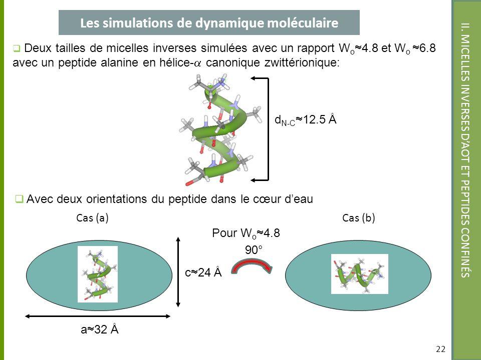 22 II. MICELLES INVERSES DAOT ET PEPTIDES CONFINÉS 22 Cas (a)Cas (b) 90° Les simulations de dynamique moléculaire Deux tailles de micelles inverses si