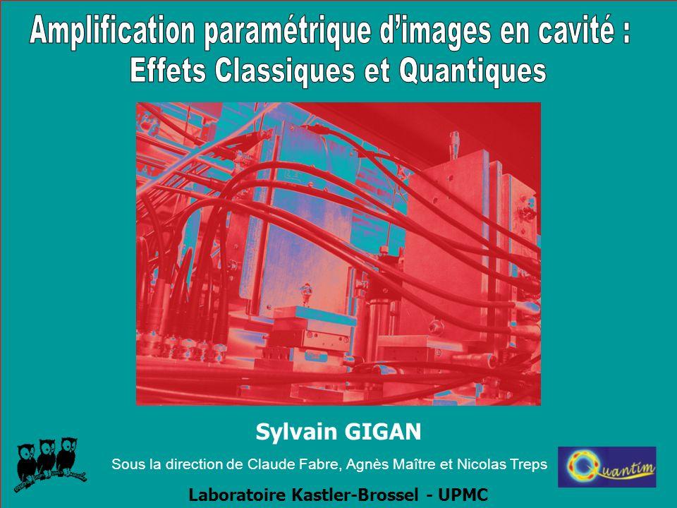 Limite quantique dans les images Nombre de photons utilisés dans limage (Morris 89) Images Optiques = PIXELS Nécessité de contrôler le bruit quantique LOCAL Bruit de photon relatif