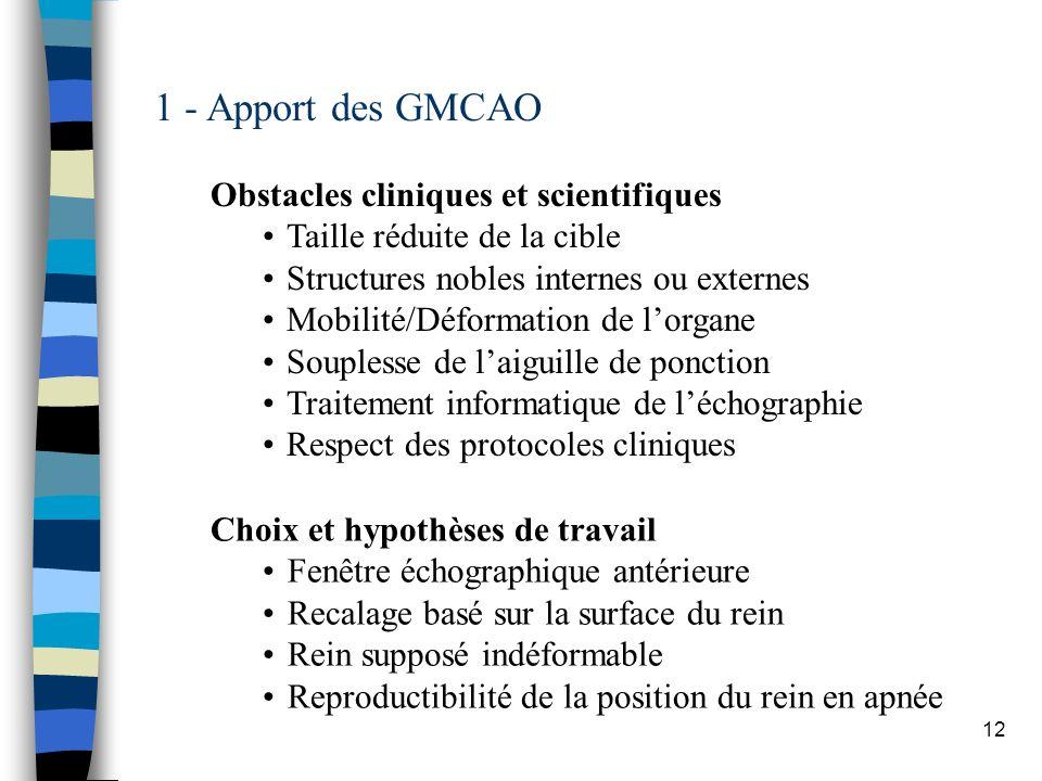 12 1 - Apport des GMCAO Obstacles cliniques et scientifiques Taille réduite de la cible Structures nobles internes ou externes Mobilité/Déformation de